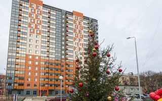 Реновация Отрадное последние новости района СВАО в 2019 году